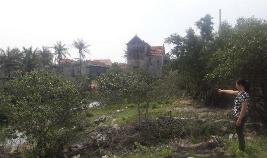 Khu đất ông Hương, bà Cần nằm trong diện thu hồi DA phân lô đất ở