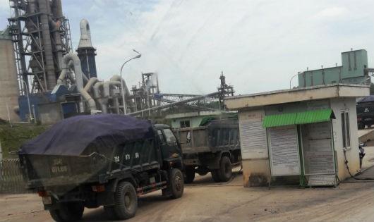 Đoàn xe nối nhau đưa nguyên liệu lậu vào Nhà máy Xi măng Đồng Lâm.