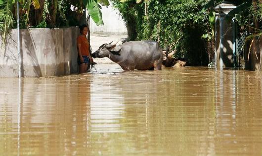 Thủy điện Bản Vẽ có liên quan khi vùng hạ du ngập lụt trong ngày nắng?
