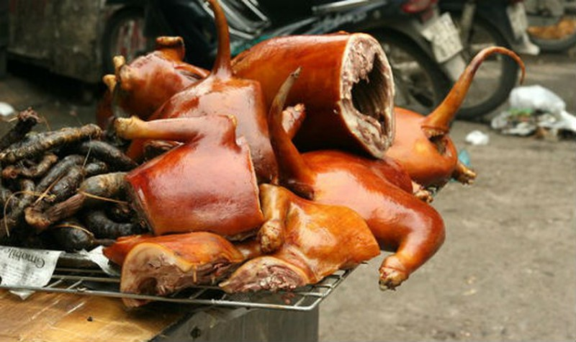 Hà Nội tuyên truyền phổ biến cho người dân hạn chế ăn thịt chó, mèo để phòng bệnh dại