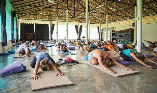 Lớp yoga ở trường Agama Yoga trên đảo Koh Phangan, Thái Lan