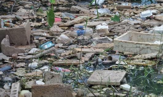 Hạn chế tác hại của rác thải nhựa cách nào?