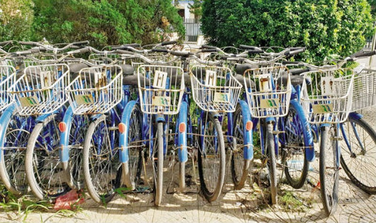 Xe đạp công cộng xếp hàng đìu hiu trong Trường Đại học Công nghiệp.