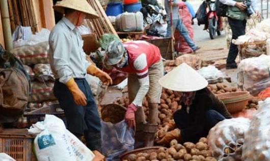 """Khoai tây Trung Quốc được """"khoác áo mới"""" để biến thành khoai Đà Lạt, bán tại các chợ dân sinh"""