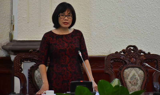 Công dân Việt Nam có 2 quốc tịch: Sẽ có hướng dẫn cụ thể về 'trường hợp đặc biệt'