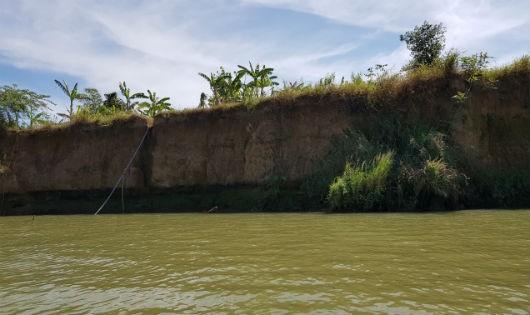 Khu vực đoạn qua xã Bình Lợi (huyện Vĩnh Cửu) đang sạt lở nghiêm trọng