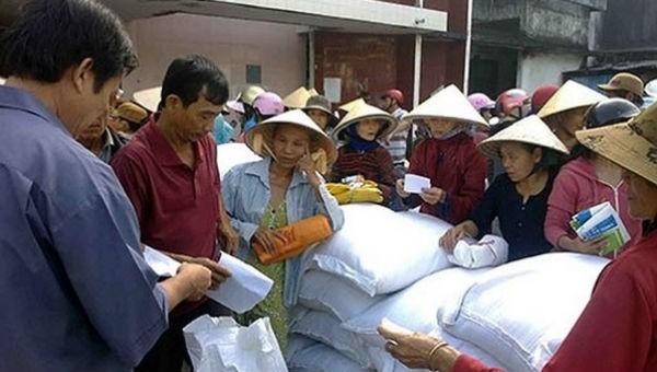 Hỗ trợ gạo cho nhân dân 3 tỉnh dịp Tết Nguyên đán  2019