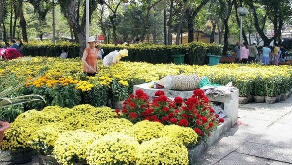 130 chợ hoa Tết và đường hoa xuân phục vụ người dân và du khách TP HCM