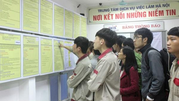 Thúc đẩy dịch vụ việc làm cho thanh niên