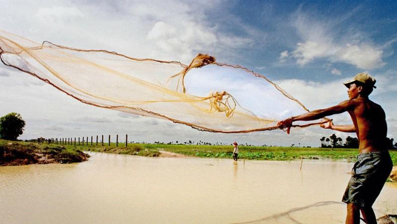 Ngư dân Campuchia quăng lưới xuống hồ Tonle Sap