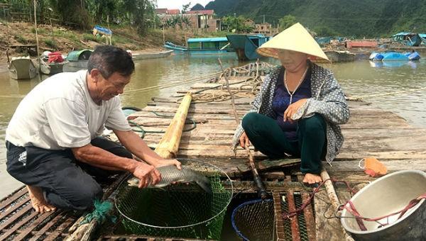 Quảng Bình: Gần 14.000 việc làm nhờ phát triển du lịch