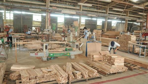 Thúc đẩy tuân thủ pháp luật trong ngành chế biến gỗ trên toàn quốc