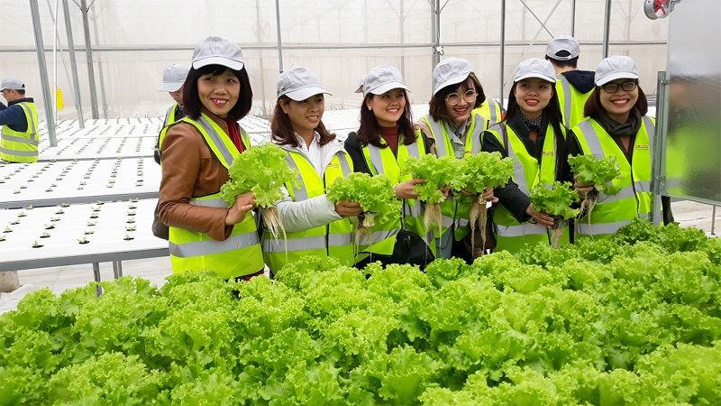 Nhiều địa phương áp dụng công nghệ thông tin vào nông nghiệp: Xu hướng nông nghiệp thời đại 4.0