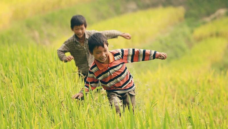 Hi sinh tuổi thơ không phải là con đường đưa trẻ đến thành công.