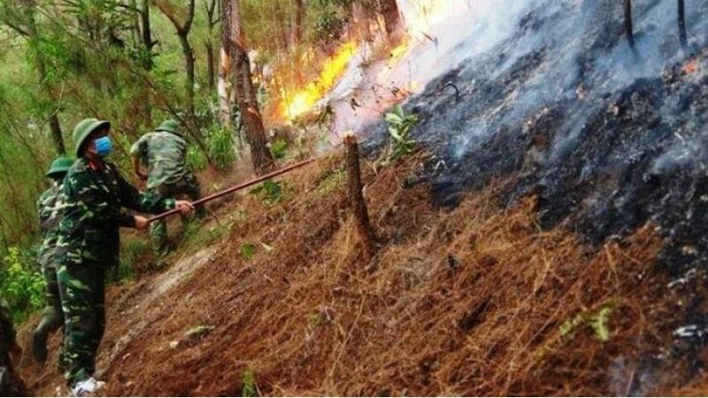 Cán bộ, chiến sĩ LLVT Quân khu 4 dập lửa tại khu vực xã Khánh Sơn, huyện Nam Đàn, tỉnh Nghệ An