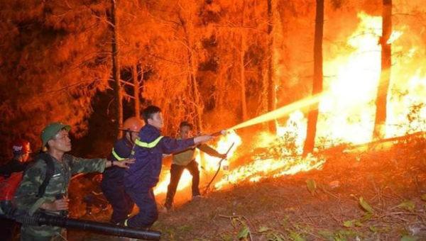 Hiện trường vụ cháy rừng ở Hà Tĩnh