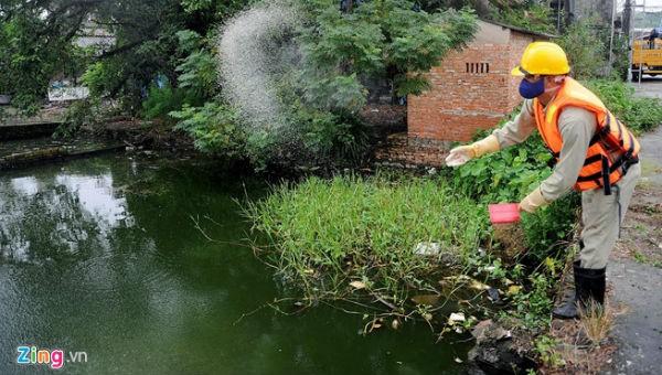Sử dụng Redoxy-3C để làm sạch ao, hồ