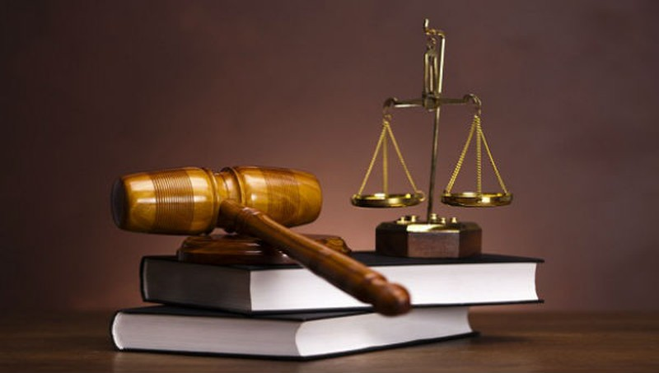 """Đừng """"làm thay"""" cơ quan thực thi pháp luật"""