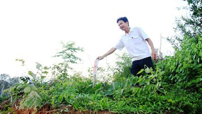 Gang thép Hòa Phát – Dung Quất xâm hại nhiều mồ mả