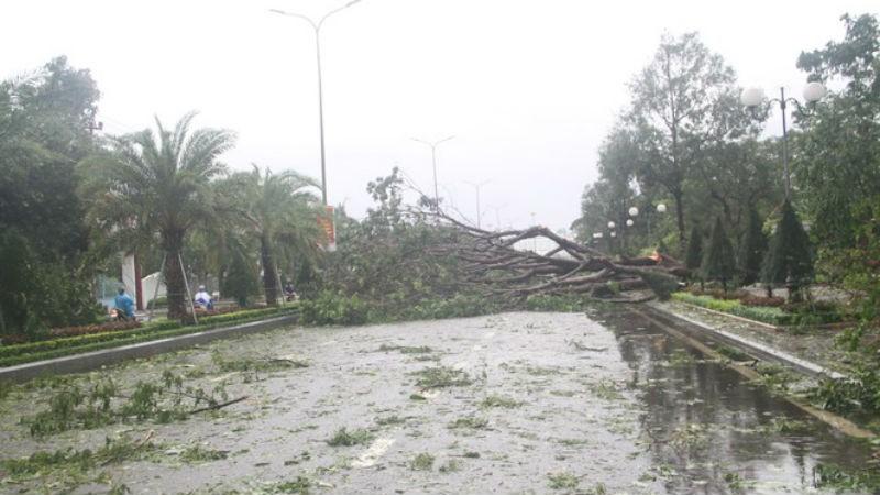 Cảnh nhiều tỉnh Trung bộ ngổn ngang, 'tan hoang' sau bão số 5