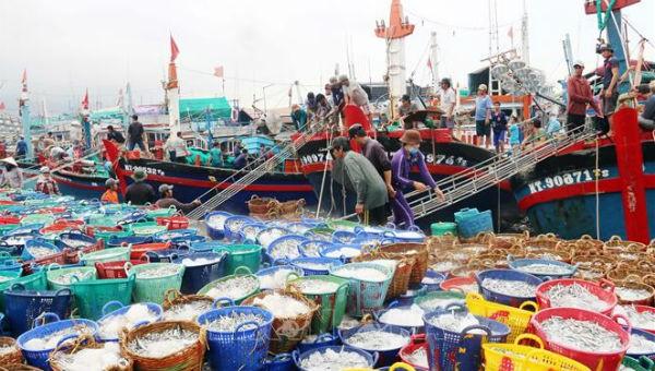 """Tập trung mọi phương án gỡ """"thẻ vàng"""" cho ngành thủy sản"""