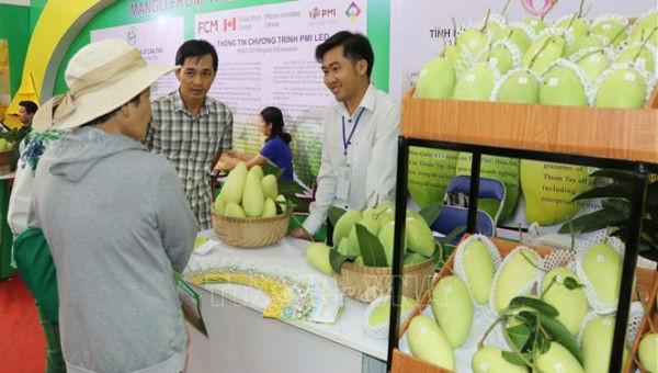Giới thiệu sản phẩm tại hội chợ