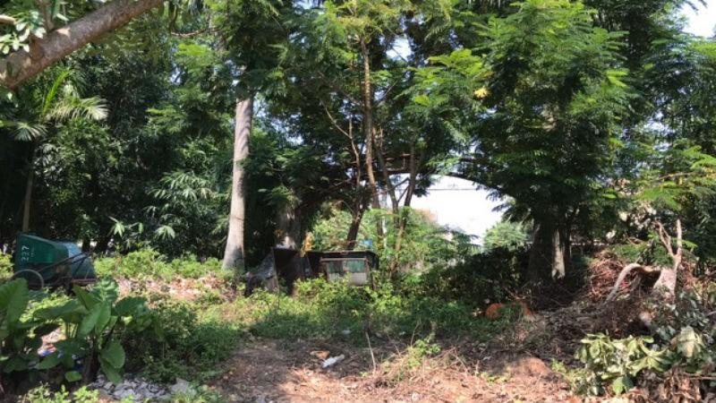 Công viên Đồng Sơn 15 năm hoang phế: Doanh nghiệp xin được một lần đối thoại với Quảng Bình