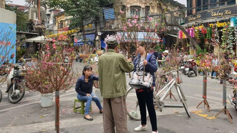 Người dân khu phố cổ mua đào trưng tết