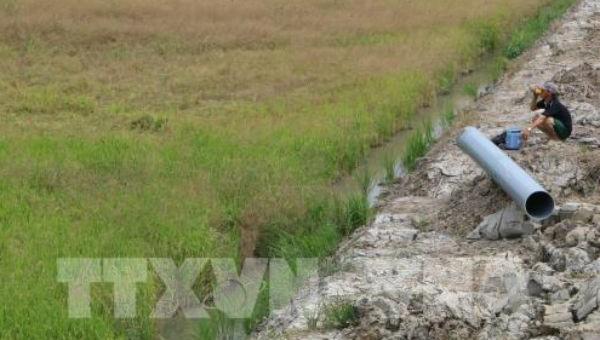 Hạn hán diễn ra phức tạp tại Đồng bằng sông Cửu Long.