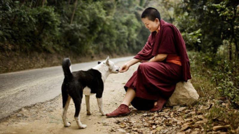 Ý thức cộng đồng thấm đẫm trong tư tưởng của nhà Phật