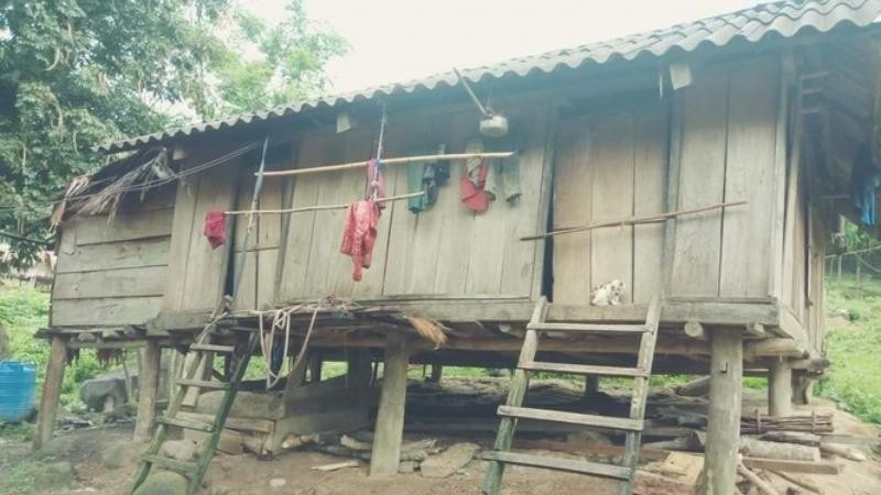 Sợ dịch Covid-19, 20 người bỏ nhà vào rừng