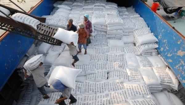 Doanh nghiệp bị kẹt hàng trăm nghìn tấn gạo không xuất khẩu được vì cách điều hành giật cục, thiếu phối hợp của cơ quan quản lý.