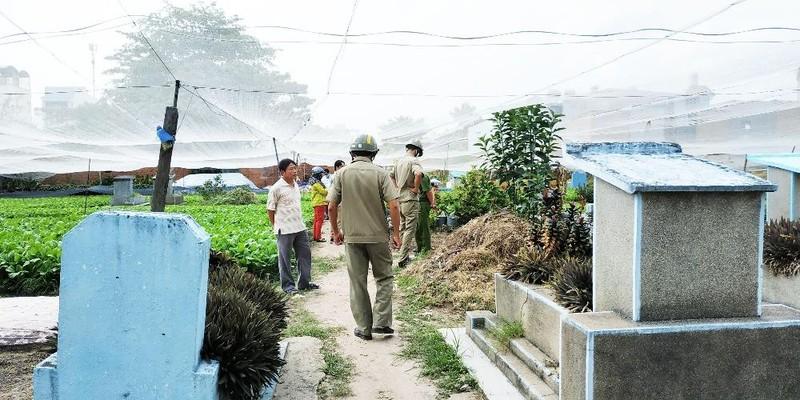 Vụ trồng rau trên đất mộ tại TP HCM: Chỉ đạo của Chủ tịch quận 12 bị đối tượng vi phạm 'phớt lờ'