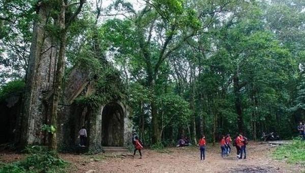 Một phế tích trong Vườn quốc gia Ba Vì.