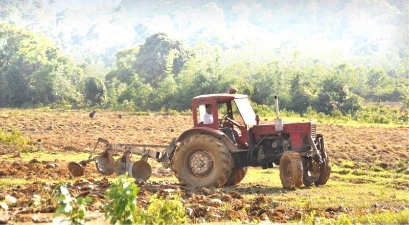 Đất được cấp cho người dân tái định cư thủy điện A Lưới nhưng không thể sản xuất, canh tác do đất lẫn nhiều đá.