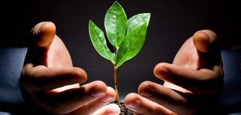 Pháp luật bảo vệ những hạt mầm từ thiện phát triển tốt đẹp đúng hướng.