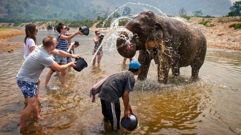 Tắm voi là một trong những hình thức du lịch được khuyến khích phát triển.