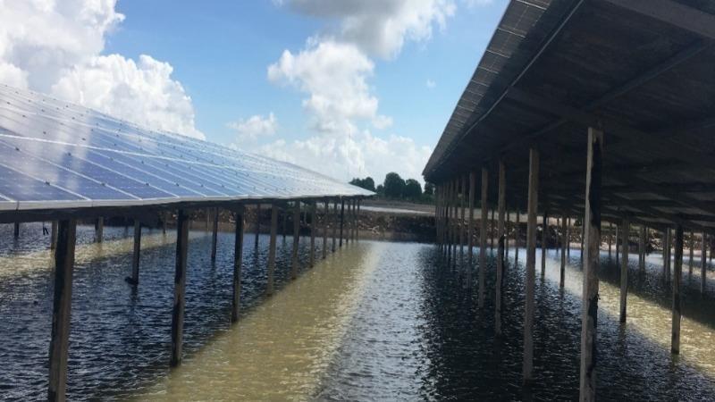 Kinh tế xanh ở Hậu Giang: Kết hợp nông nghiệp công nghệ cao và điện mặt trời