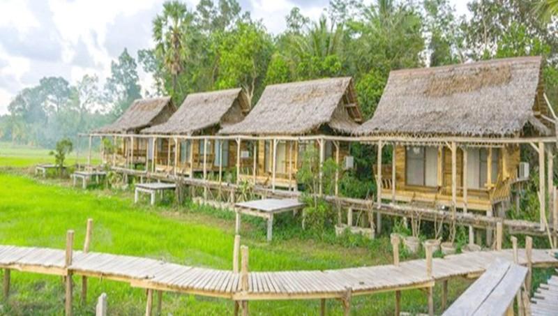 Mô hình du lịch nông trại nghỉ dưỡng nở rộ gần đây.