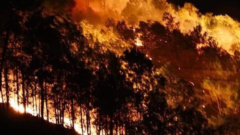 Những cánh rừng bị biến thành ngọn đuốc khổng lồ do sự vô ý thức của người dân.