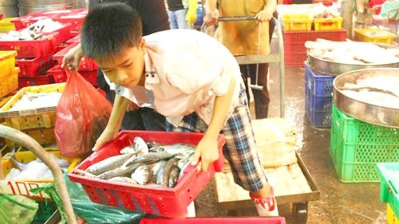Lạm dụng lao động trẻ em: Làm gì để xóa bỏ tận gốc?
