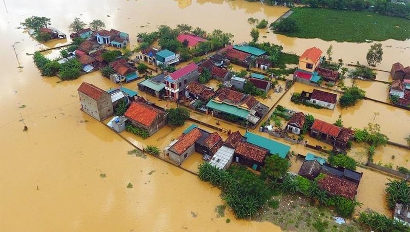 Năm 2020, Việt Nam hứng chịu nhiều thiên tai khốc liệt.