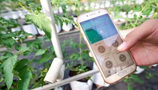Dùng công nghệ 4.0 để theo dõi việc quản lý và chăm sóc cây xanh