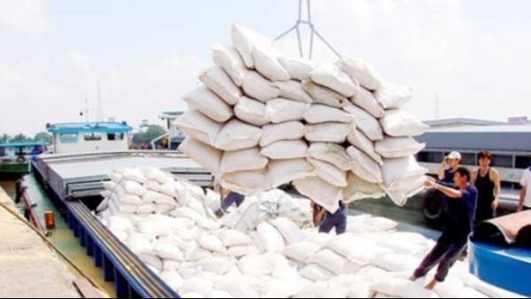 Chấm điểm uy tín nhà thầu mua gạo dự trữ quốc gia