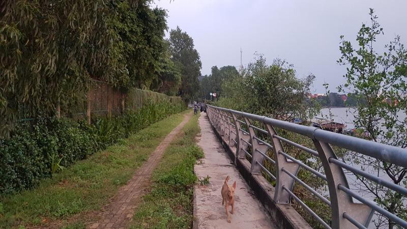 """Biến dòng kênh đen trở thành """"sông Seine của Sài Gòn"""""""