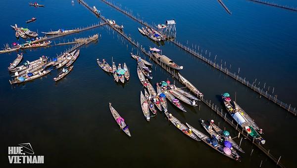 Thành lập khu bảo tồn thiên nhiên đất ngập nước Tam Giang- Cầu Hai