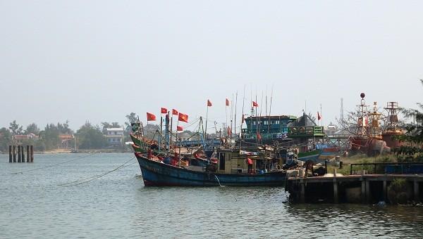 136 tàu cá ở Thừa Thiên Huế mất kết nối với cơ quan quản lý thủy sản