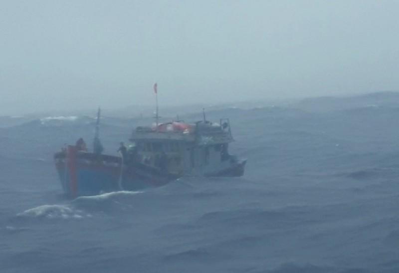 Cứu 14 ngư dân Quảng Ngãi bị nạn trên biển