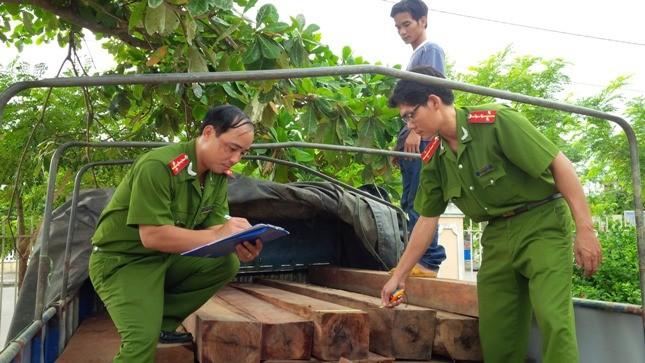 Quảng Nam: Ngụy trang gỗ lậu dưới các bao trấu