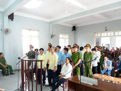 Tuyên trả hồ sơ điều tra lại vụ phá rừng ở Đà Nẵng